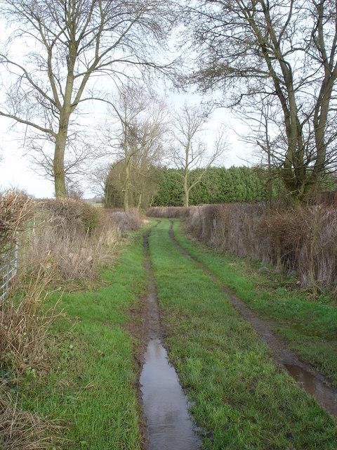 Green Lane beside Dawley's Caravan Site