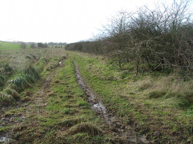 Bridleway to Orcheston