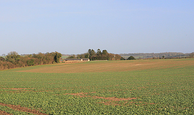 Foxhill seen from Copse Lane, Brown Candover