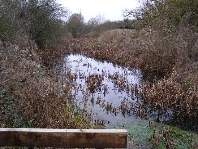 Thurlby Fen Slipe Nature Reserve
