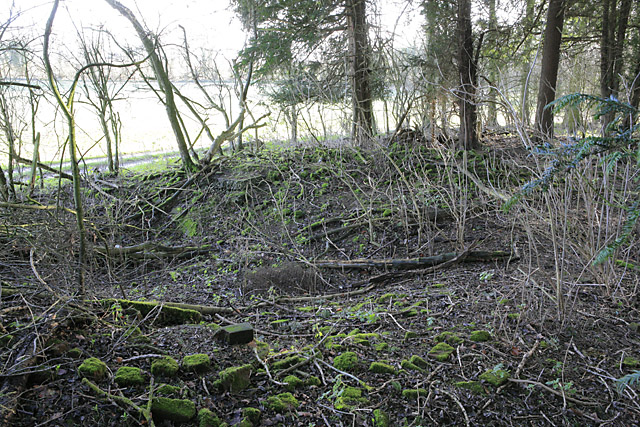Ruins in Burnt House Copse, nr Brown Candover