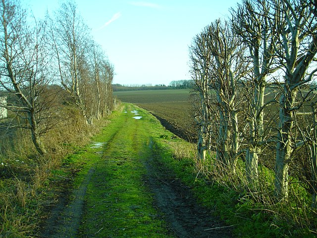 Farm track beside the railway