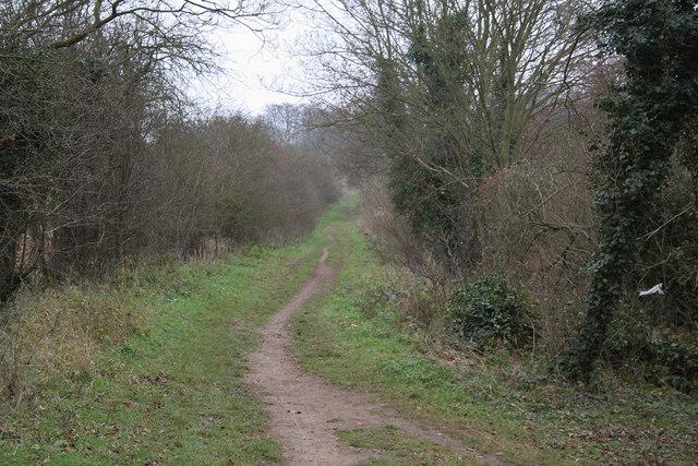 Roman Road, Gog Magog Hills