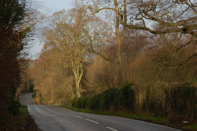 The Crawfordsburn Road, Clandeboye