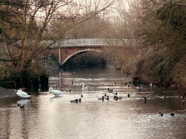 River Blackwater in Kelvedon, Essex