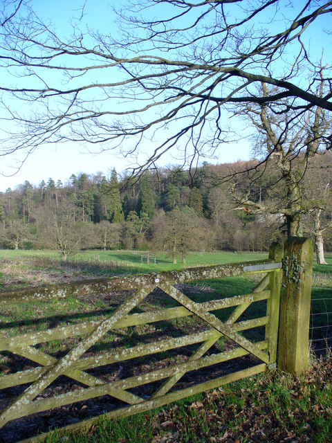 Gate near Wadesmarsh Farm
