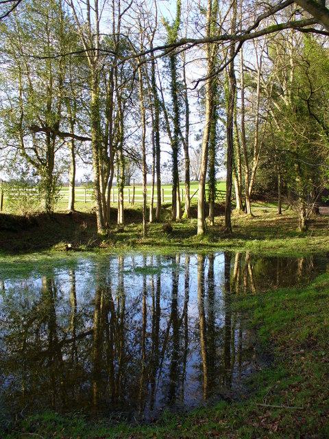 Pond by Lye Wood