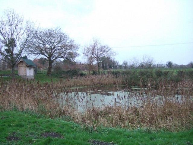 Pond on School Lane