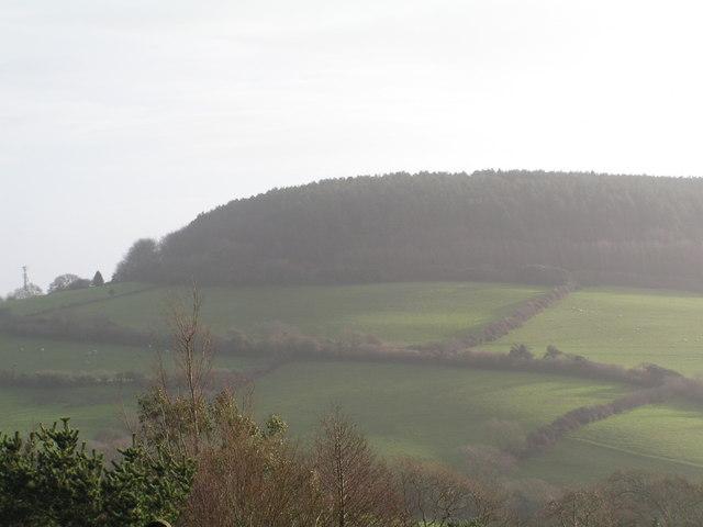 Langdon Hill