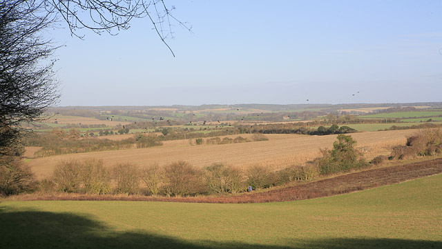 Farmland west of Godsfield Copse