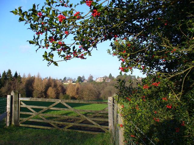 Gate in Valewood Park