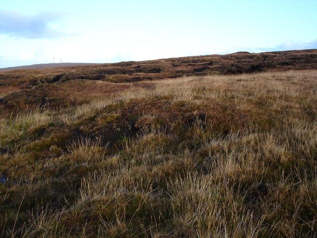 Moorland above Melvaig