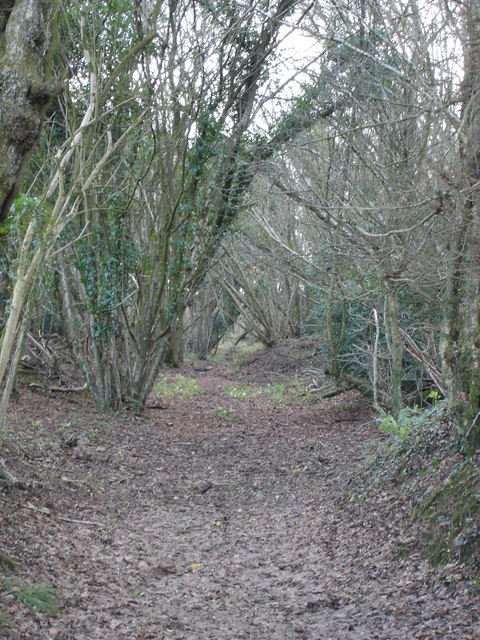 Footpath through woods near Hyde Farm