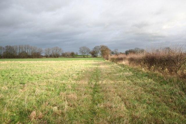 Fenton farmland