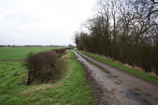 Coates Lane