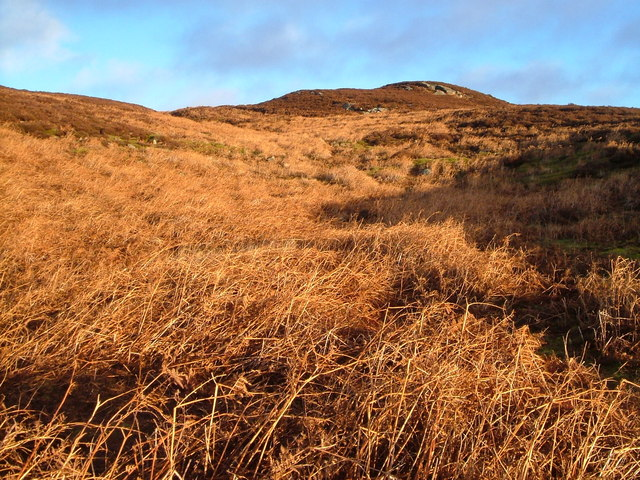 Hill north of Black Pool