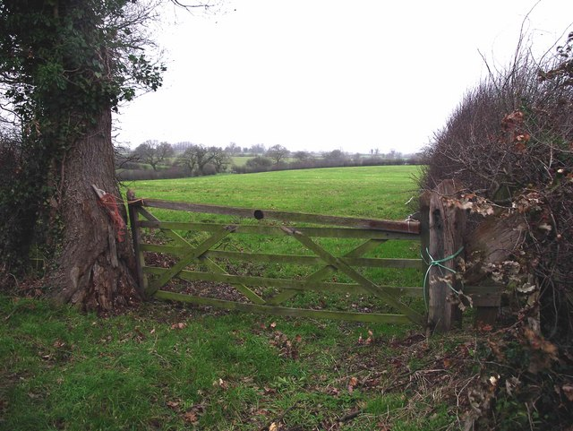 Field gate near Moston