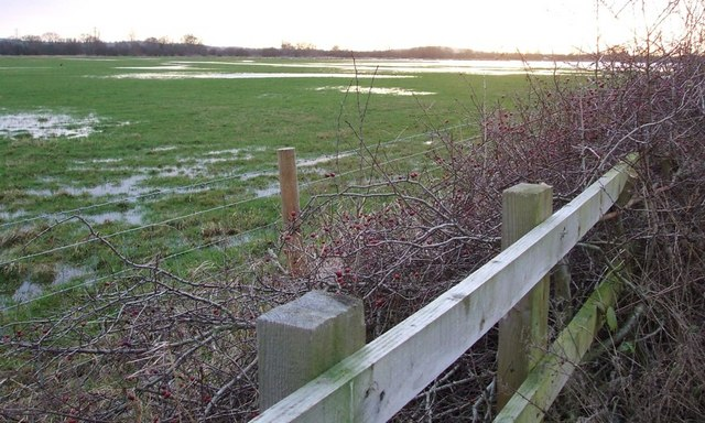 Fences, hedge & floods