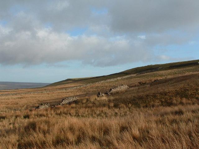 Stake Fell, Carpley Green, Bainbridge