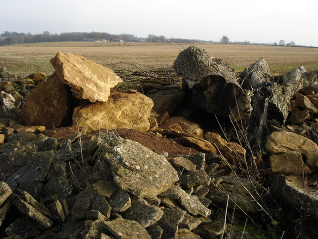 Cotswold stone cleared from a field