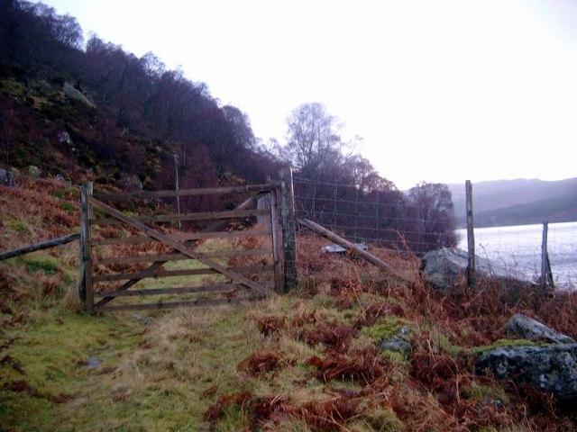 Gate on the Kildermorie track