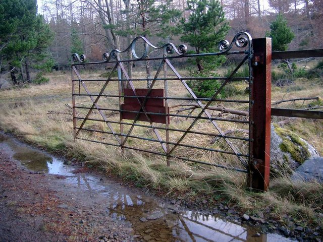 Fine gate on the Kildermorie track