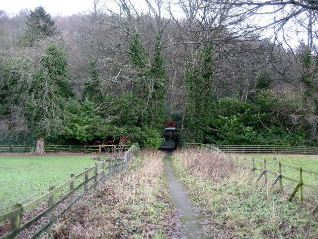 Path to Harefield Hall