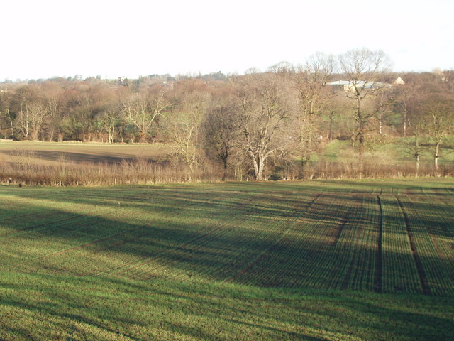 The Went Valley at Ackworth, December 2006