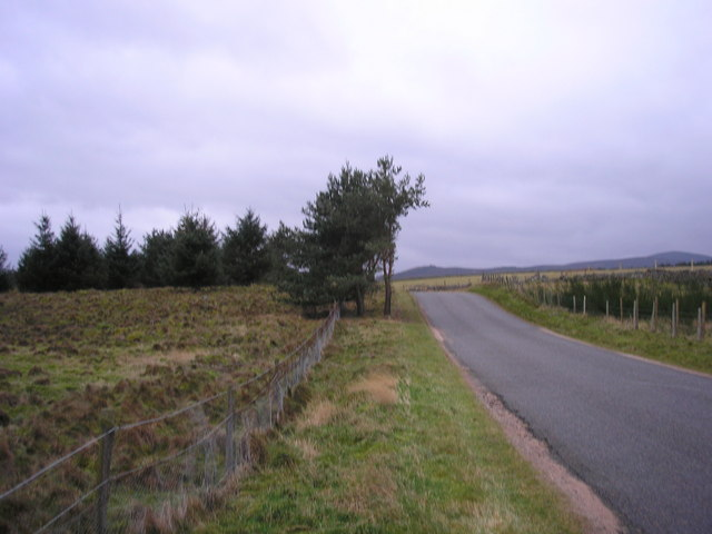 The road from Potarch to the B974