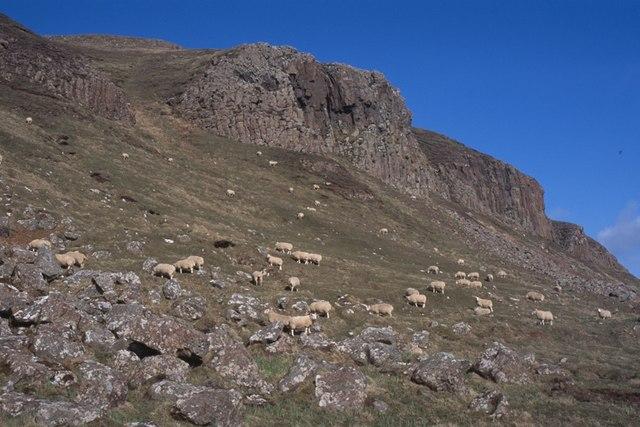 Basalt cliffs, Isle of Canna