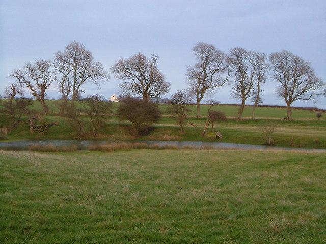 Pond near High Buston