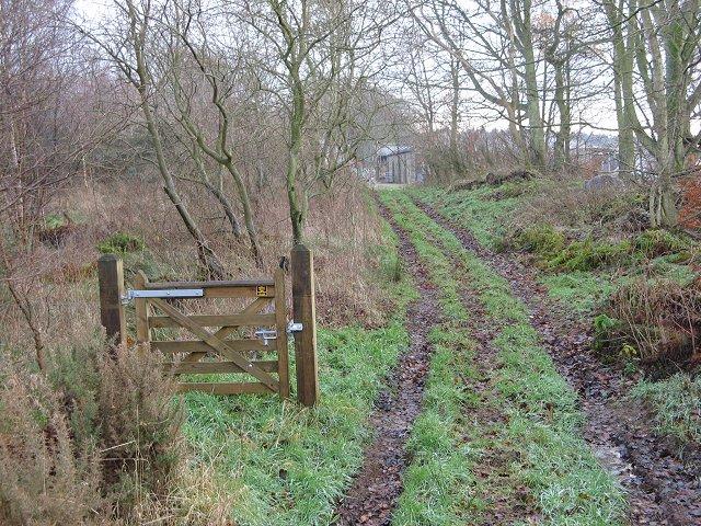Edington Hill Lane