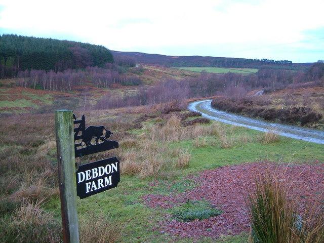 Track to Debdon Farm