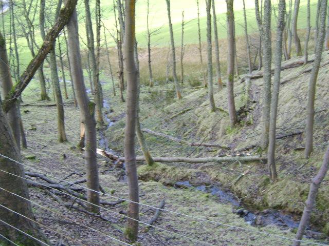 Stream near Milton