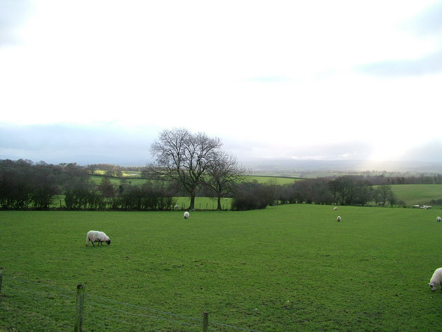 Field above Keisley Beck