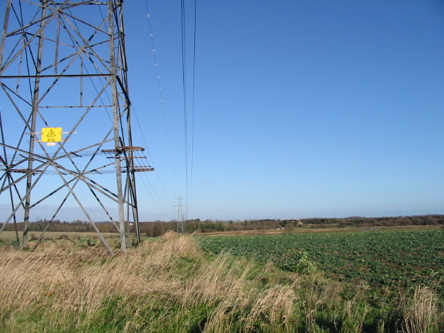 Pylons across farmland.