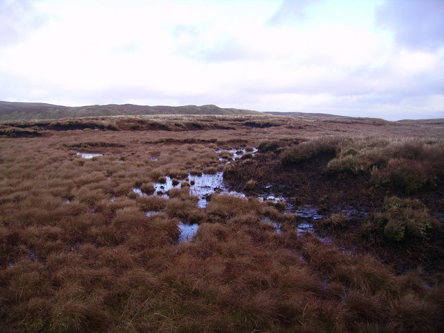 On Bannisdale Fell