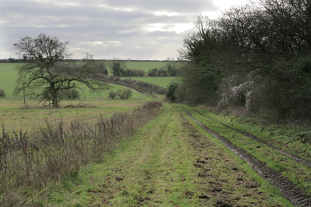 Footpath on Abbotstone Down