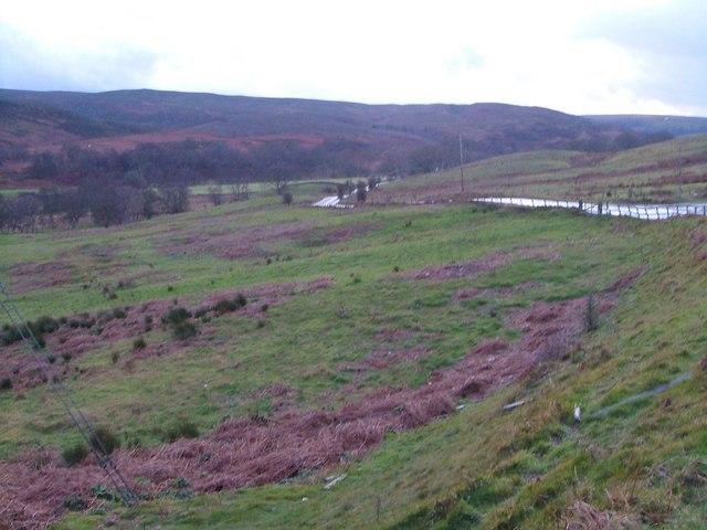 Grasslees Burn valley