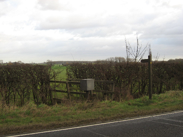 A Shorter Way To Laceby
