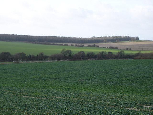 View of Cranborne Farm