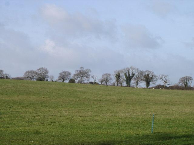 Blagdon Hill