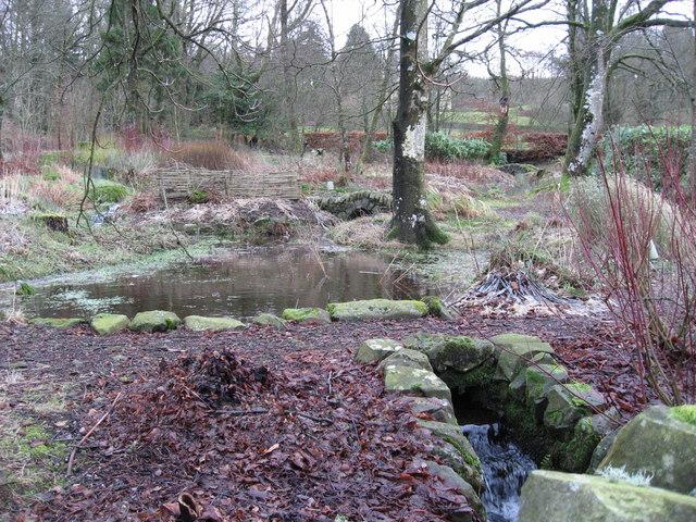 Water garden at Crofts