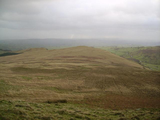 Lamb Pasture