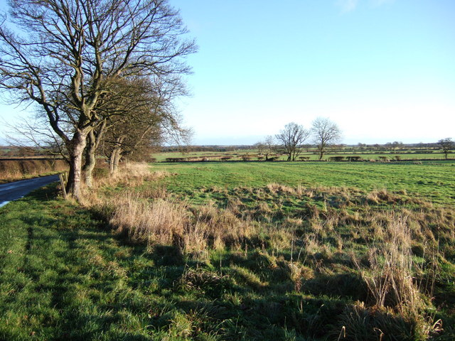 Field at Highmoor