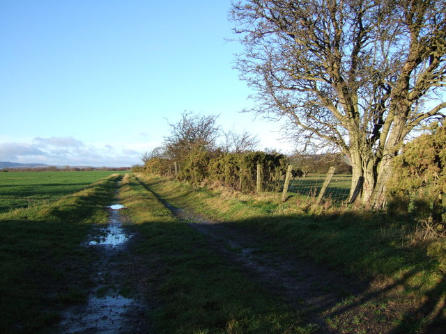 Track and field boundary near Howdens