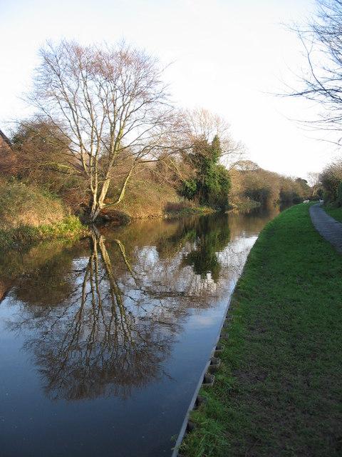Shropshire Union reflections