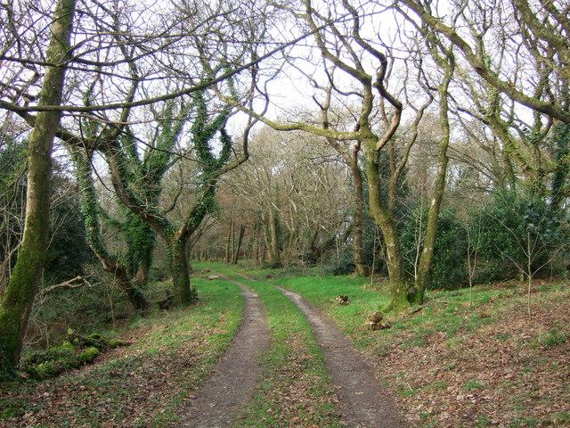 Granston Wood
