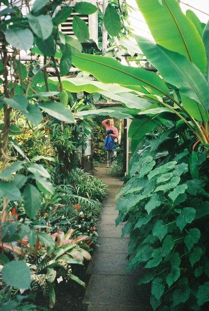 St. Andrews Botanical Garden 3