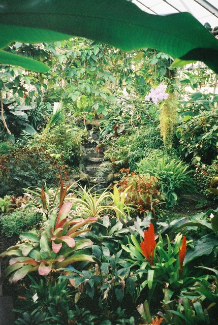 St. Andrews Botanical Garden 4
